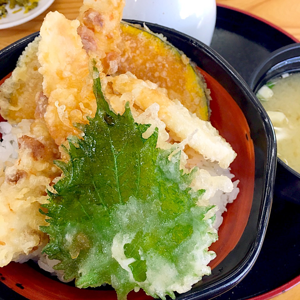 【あげたて】熊本光の森店!天ぷらランチが390円~と安い値段@メニュー