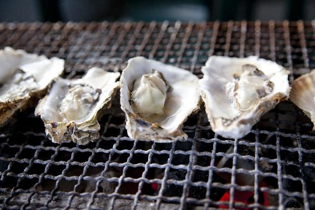 【海勇水産】熊本で牡蠣!が年中@美味しく食べられる店