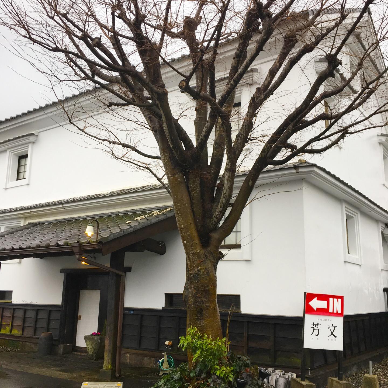 【芳文】熊本カフェでランチした!ディナーも素敵!レトロで落ち着いた空間