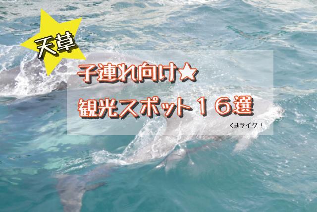 【天草】子連れ観光旅行スポット!イルカ・海・公園など@16選