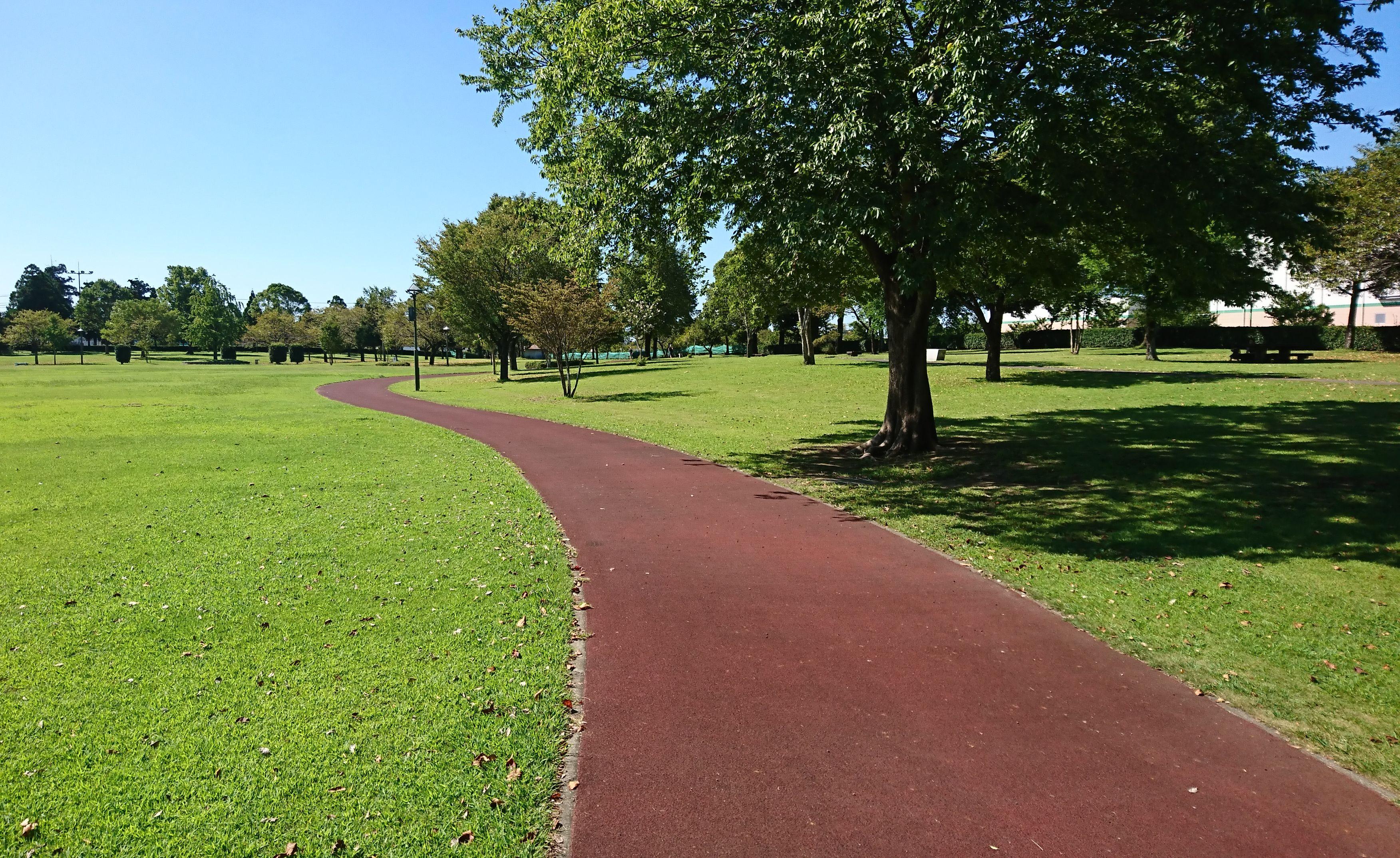 【菊陽杉並木公園さんさん】広い芝生で遊ぼ!夏にはバーベキュー
