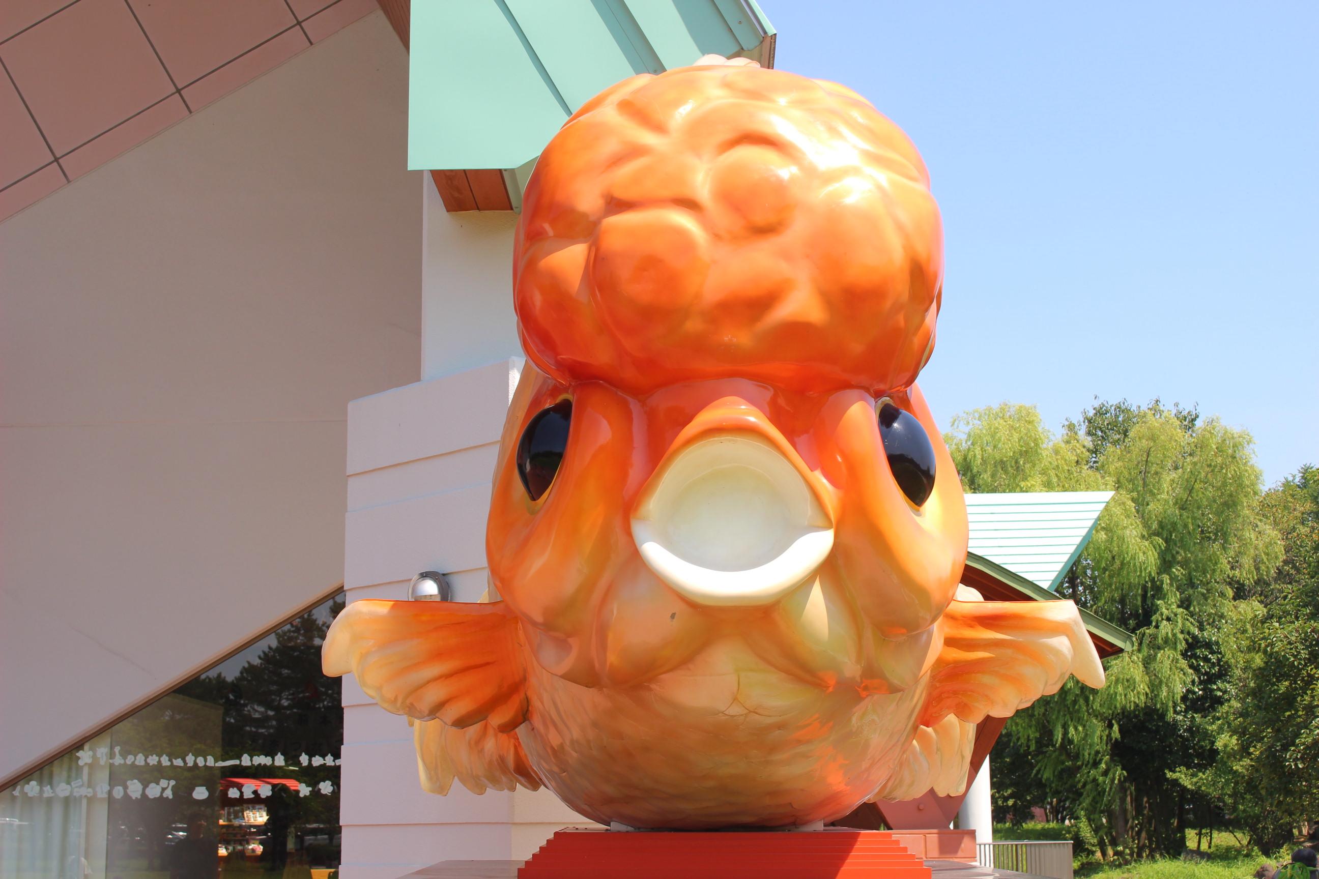 【金魚と鯉の郷】長洲!遊具、公園広場で遊んだ。水遊びもあるよ