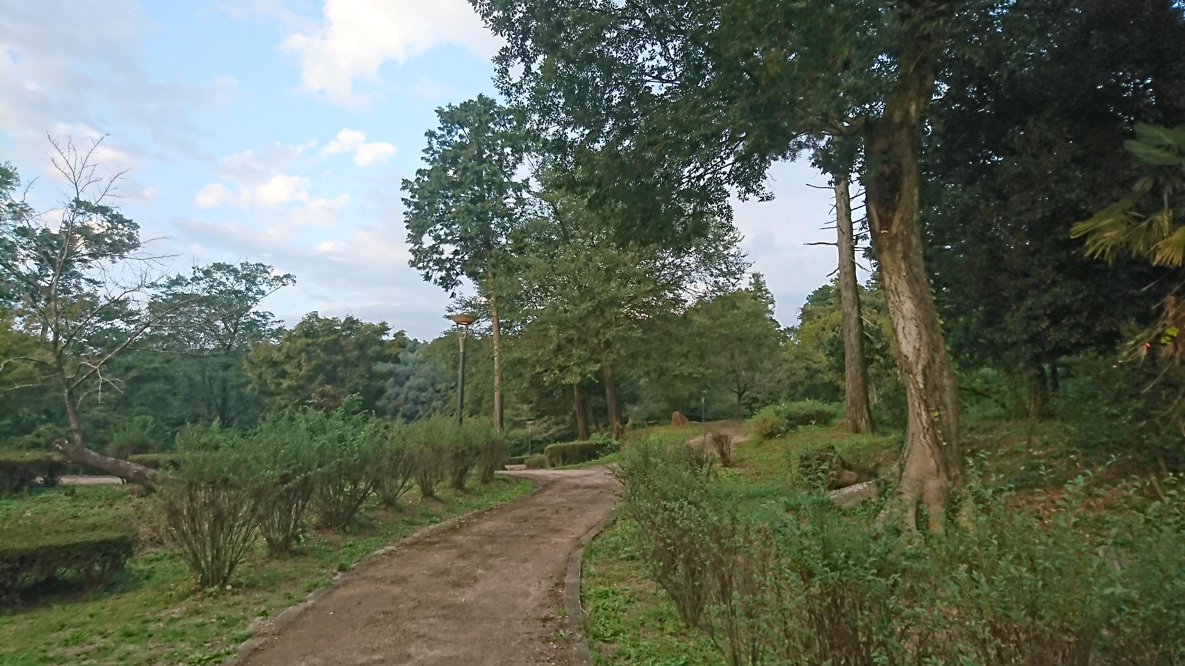 【蛇ノ尾公園】合志市、自然の地形を利用した四季折々の植物が楽しめる公園