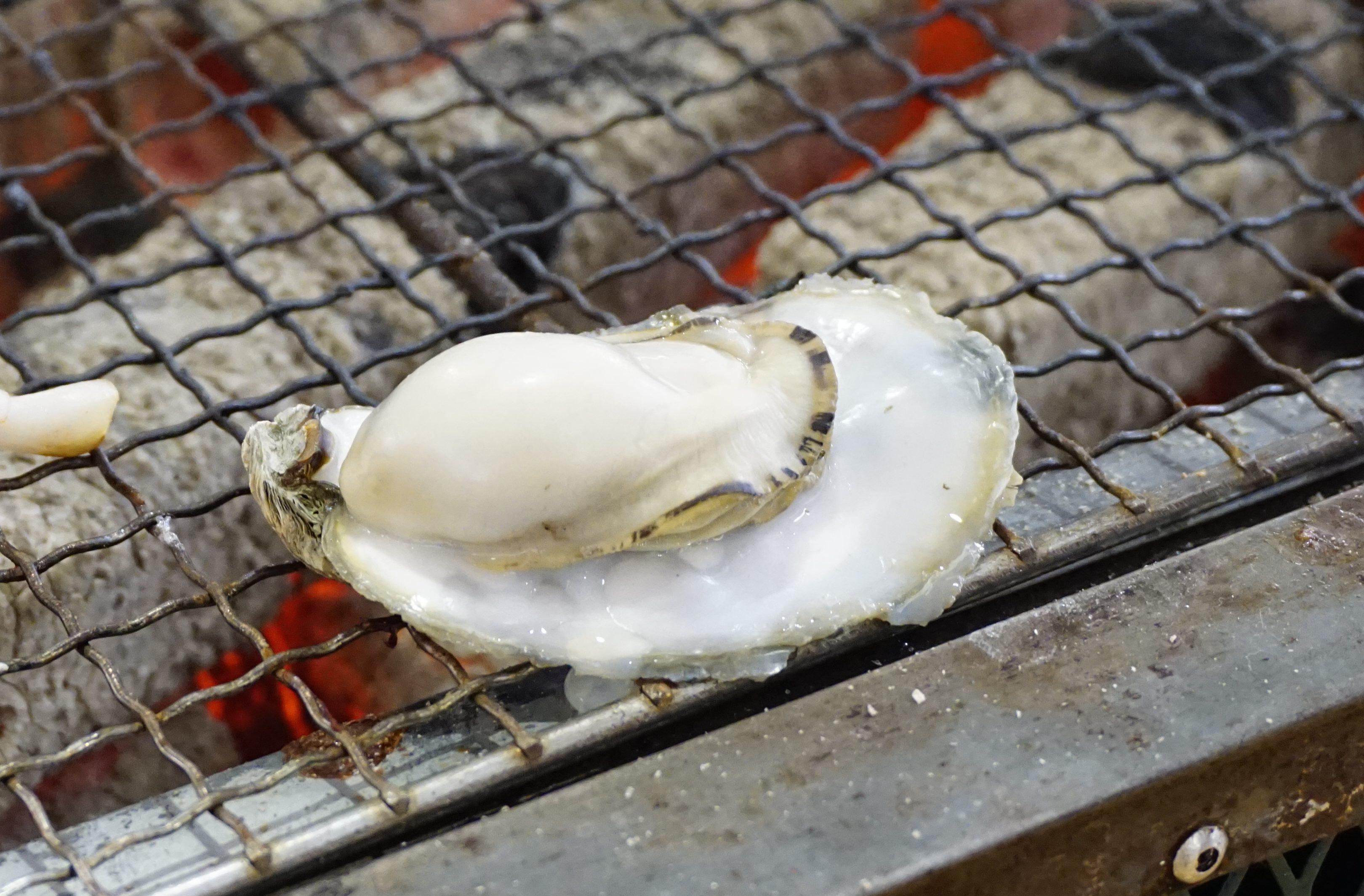 【海勇水産】城南・今が旬!牡蠣小屋で食べるぷりっぷり牡蠣の海鮮バーベキュー