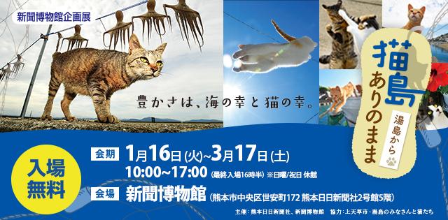 【猫島ありのまま湯島から写真展】熊本日日新聞の人気連載・写真展が開催中