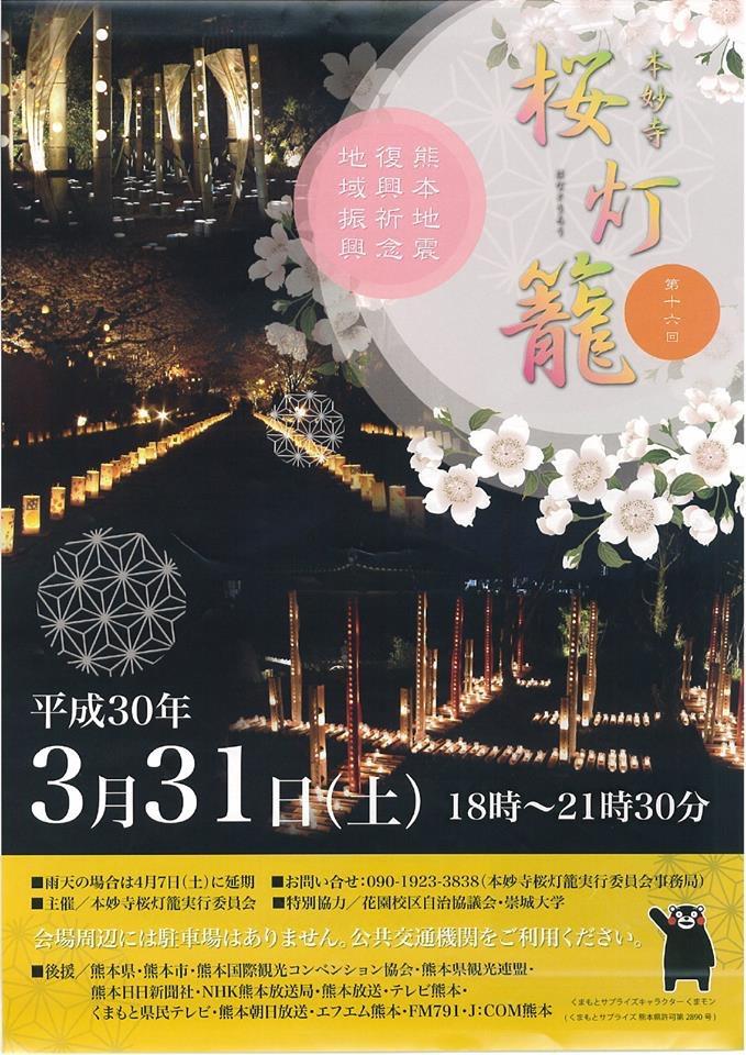 【本妙寺 桜灯篭】夜桜と、幻想的な風景を楽しむイベント!