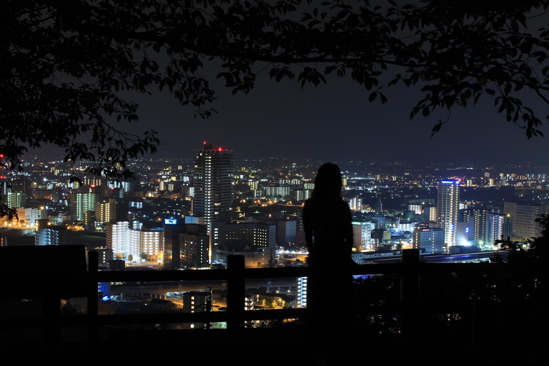【花岡山】熊本の夜景スポットへ!昼間は、歴史を感じに行こう。