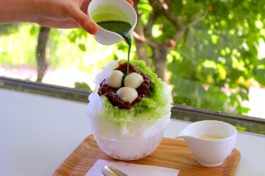 【平山温泉フローラ】山鹿の口コミ!食事・温泉かき氷・カフェ・個室でのんびり過ごす