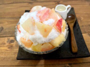 【木いちご】光の森のケーキ屋で「かき氷」ふわふわ不思議食感!夏季限定