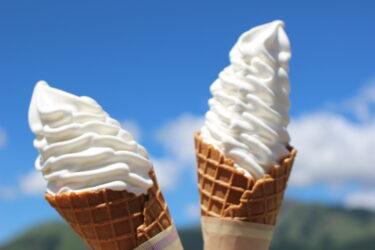 【道の駅 あそ望の郷くぎの】食事・ソフトクリームを楽しむ!ドライブの休憩スポット